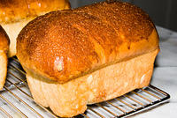 "Cinnamon Raisin Bread, ""junior"" loaves, own recipe  20070512-14.43.09"